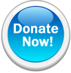 NHS PTSA Donation $200-$500