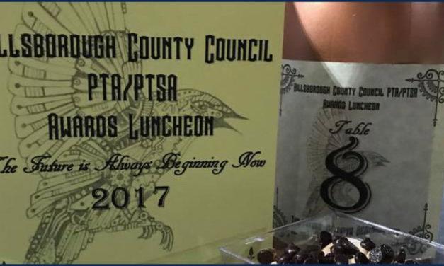 Newsome Hillsborough County PTA/PTSA Award Winners